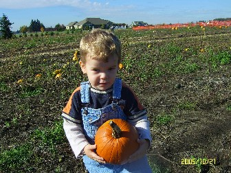 Pumpkin Patch 2005